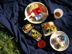 Picknick mit veganen Mini-Hot Dogs & Karottenmuffins