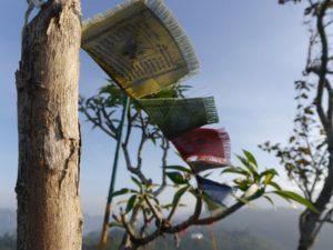 Asien: Vegan Backpacken & Low-Budget-Reisen